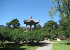 植物园风景