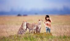 儿童模板 高清 豹子