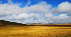 若尔盖草原秋景
