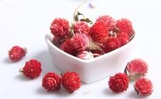 花茶 红巧梅