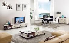 客厅茶几 电视柜