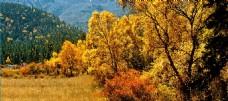大美青藏之尖扎坎布拉的秋天