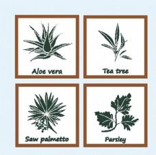 矢量植物图标