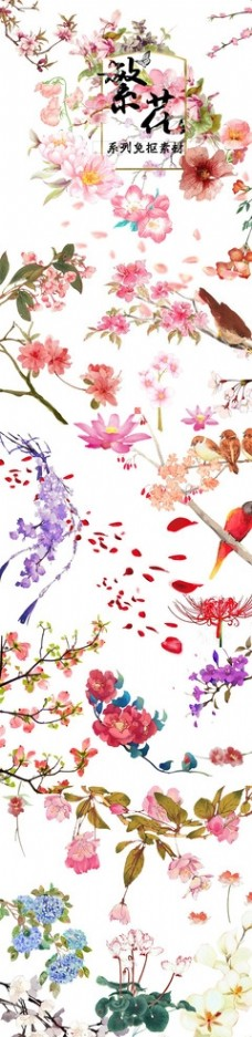 古风花卉花朵手绘