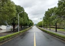 上海交大之路