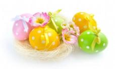 鸟窝里的彩蛋与花朵图片