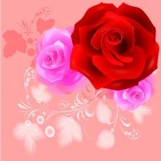 红色玫瑰花卉背景墙