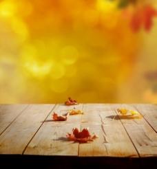 木板上的树叶与梦幻光斑图片