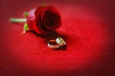 玫瑰花与戒指图片