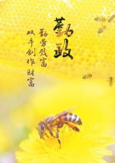 勤政勤劳蜜蜂