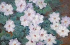 美丽的花朵油画图片