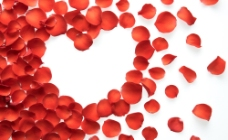 情人节花瓣背景图片