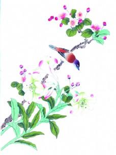 水墨鸟类植物绘画图片
