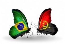 巴西与安哥拉花朵国旗图片