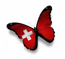 瑞士国旗蝴蝶图片