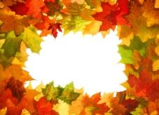 树叶背景边框图片