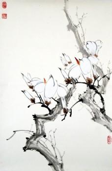 树枝上的花卉图片
