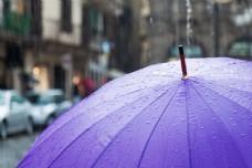雨中的紫色的伞图片