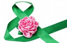绿色丝带和粉色花朵图片