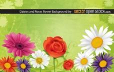 雏菊和玫瑰的花的背景