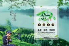 绿色茶叶海报