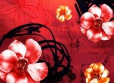花卉红色背景墙