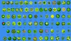 綠化 平面 圖例