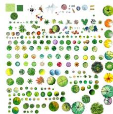 绿化平面图例