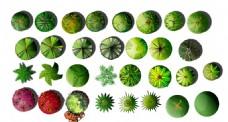 绿化 平面 图例