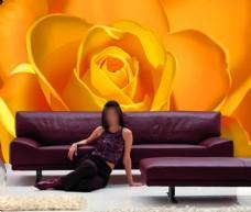 特写花卉背景墙