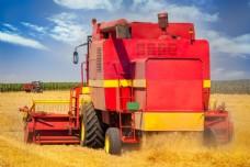 收割麦子图片