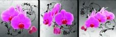 花朵装饰三联画图片