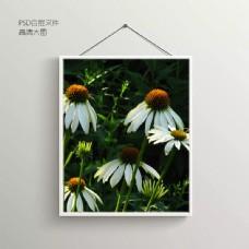 鲜花花朵无框装饰画