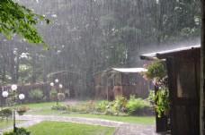 庭院中的雨图片