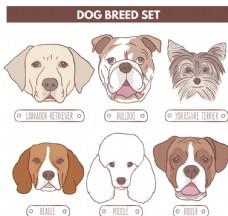 宠物狗头像