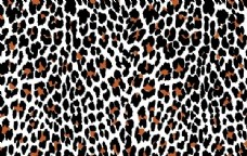 无缝Pattern Leopard