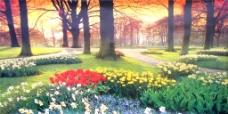 树林花海装饰画