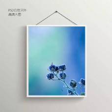 冷艳花卉无框装饰画
