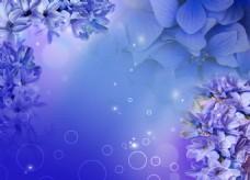 紫色元素背景墙