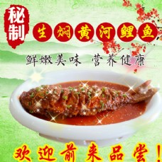 生焖黄河鲤鱼