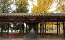 金秋中山公园