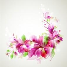 粉红色花卉插图背景