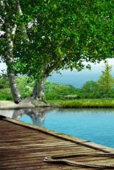 树木风景装饰画