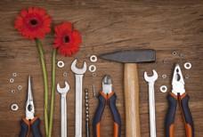 花朵和生活工具图片