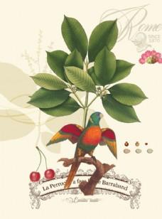 装饰画 美式叶语鹦歌
