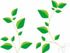 绿色叶子,禾苗