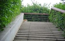 休闲主道台阶