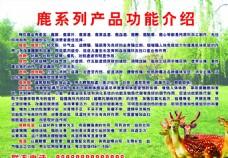 鹿系列产品功能介绍