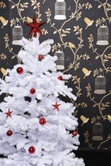 圣诞树特写图片